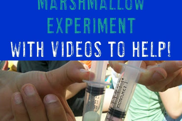 Boyle's Law – Proven by a Simple Marshmallow Experiment