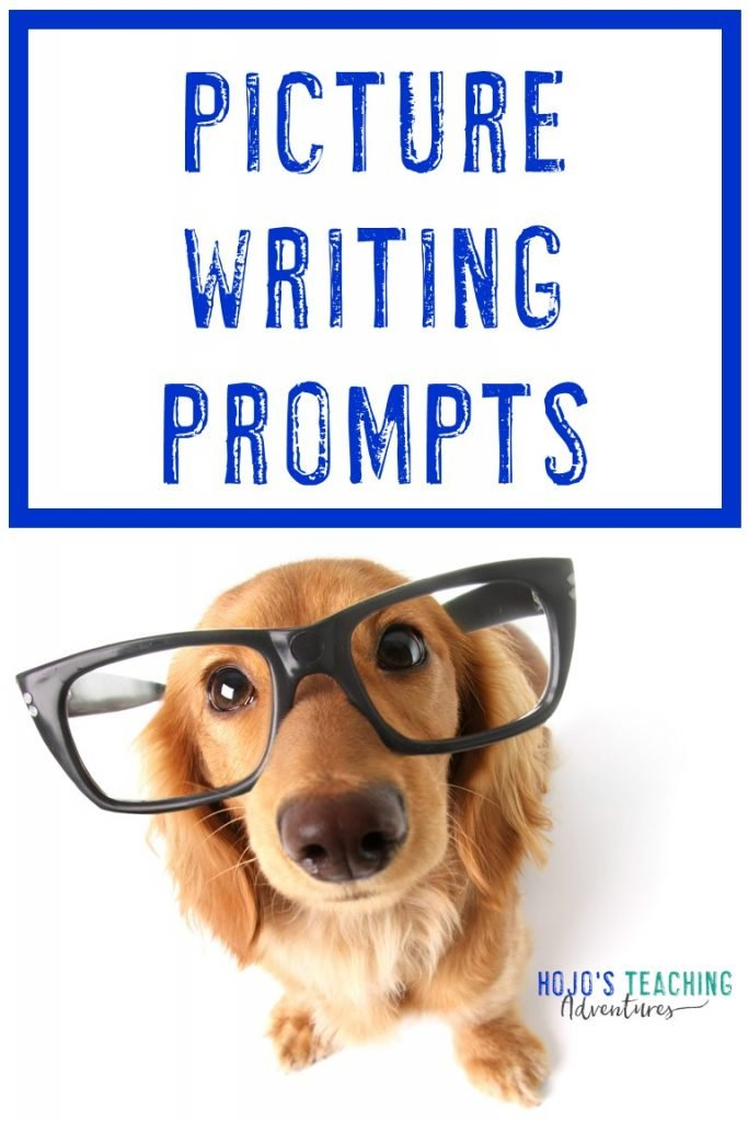 "dog wearing large glasses, looking right at the camera - with text saying ""Picture Writing Prompts"""