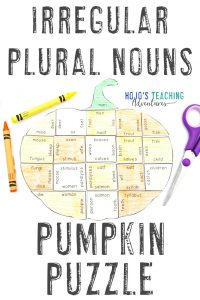 Click here to buy your own Irregular Plural Nouns puzzle!